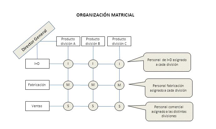 Qué Son Las Organizaciones Matriciales Y Cómo Benefician A