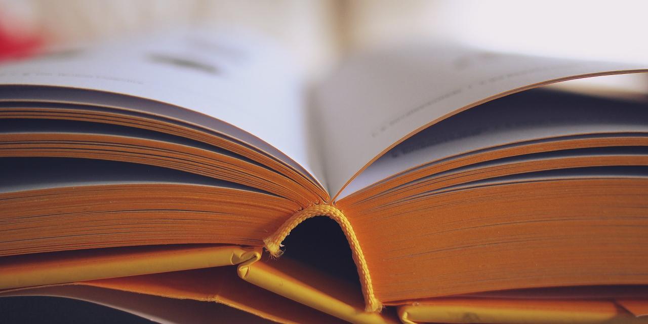 book-698625_1920.jpg