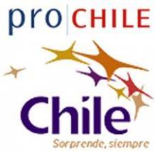 logo_prochile.jpg